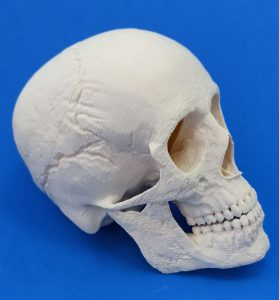 Read more about the article A impressão 3D na área médica